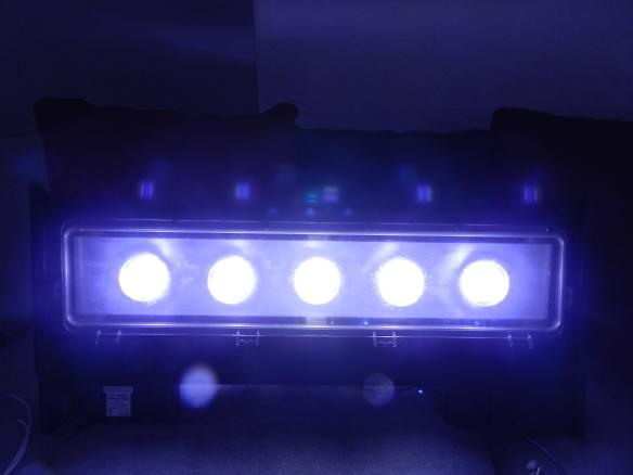 DSCN1900